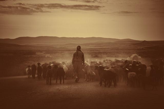 Genesis devotional about the Shepherd